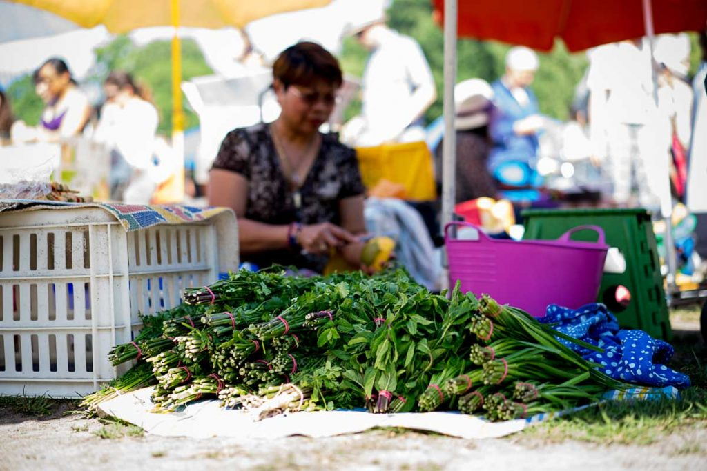 Thai Park Berlin Herbs